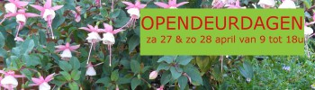 cropped-header-website-opendeurdagen-2019-fuchsia1.jpg